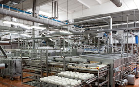 Industria Alimentar